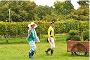 農作業風景